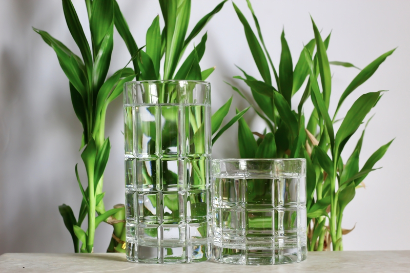 how much water does a bamboo plant need